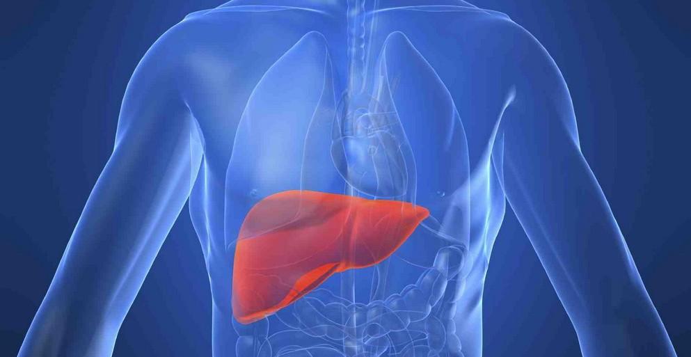 Вирусный гепатит лечение гепатита с